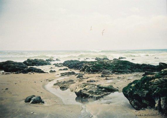 浜辺(御前崎)