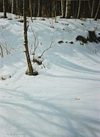 冬晴れ(樹影)