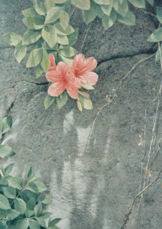 初夏(山つつじ)