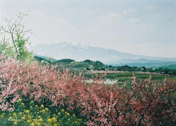 八ケ岳遠望