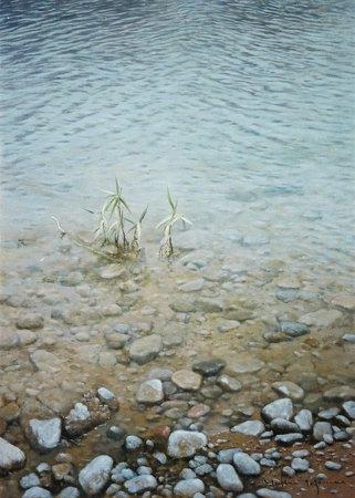 水辺(徳山)