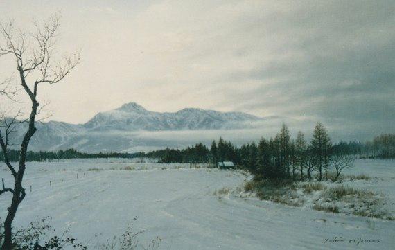 冬野(野辺山